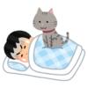 「目覚ましアラームが鳴る→飼い主が出かける」と学習した猫さん、毎朝アラームが鳴るとこれ😹