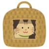 【悲報】猫のためにニトリで「ペットハウス」を購入した結果wwwww