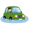 """【動画】「どうしてそうなった…」路上で""""エバーグリーン状態""""となった自動車が話題に😓"""