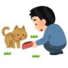 """【驚愕】インド住みの日本人ツイ民、とんでもない野良動物の""""餌付け""""に成功するwww"""
