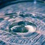 【メメタァ】なんと「波紋の呼吸」を会得したワンコが発見されるwww
