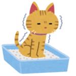 【イラスト】猫のトイレ砂を未開封で部屋に置いておいたら…とんでもない事が起こった😹