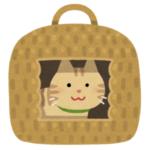【お値段以上】うちの猫にニトリの「猫用ベッド」を買ってあげた結果www